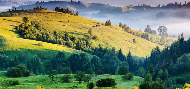 fjell landskap